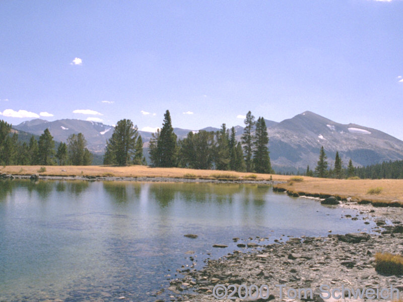 Glacial lake at Tioga Pass