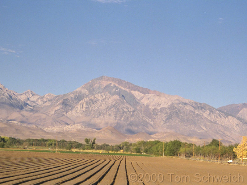 Mt. Tom, 12 miles west of Bishop, Inyuo County, California