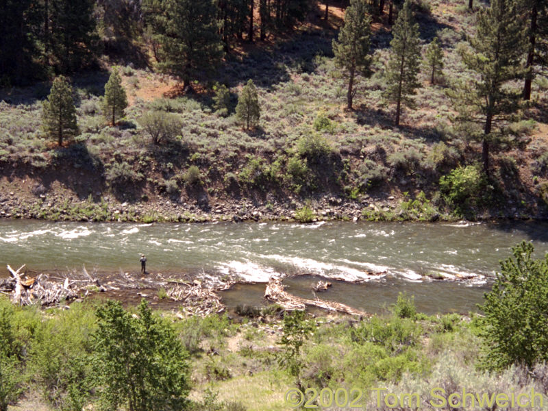Truckee River near Mystic siding, California