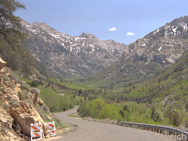 View up Lamoille Canyon.