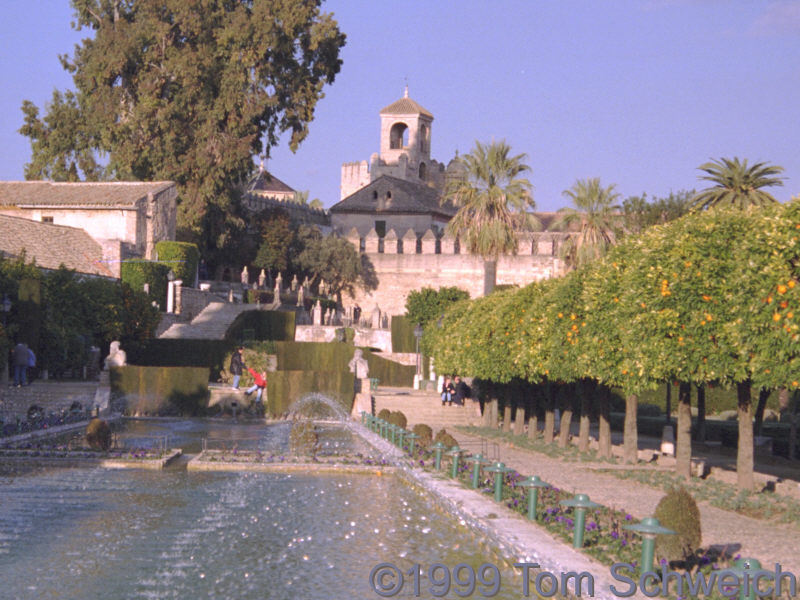 The Alcazar in Cordoba