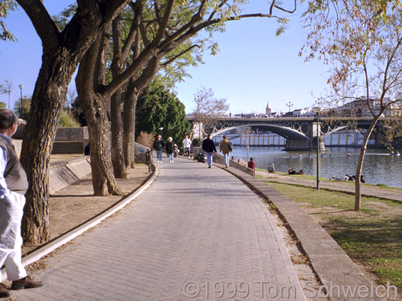 Rio Guadalquivir at the Triana Bridge