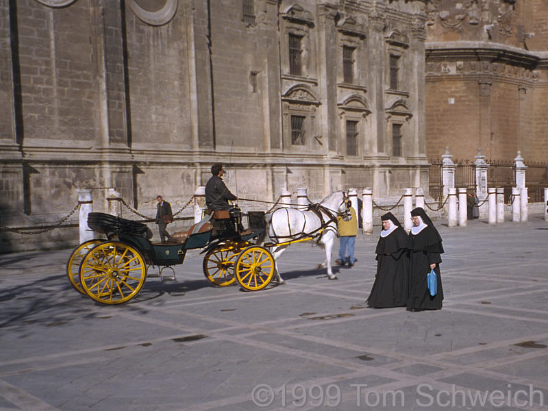 Nuns and a horse carriage behind the Cathedral