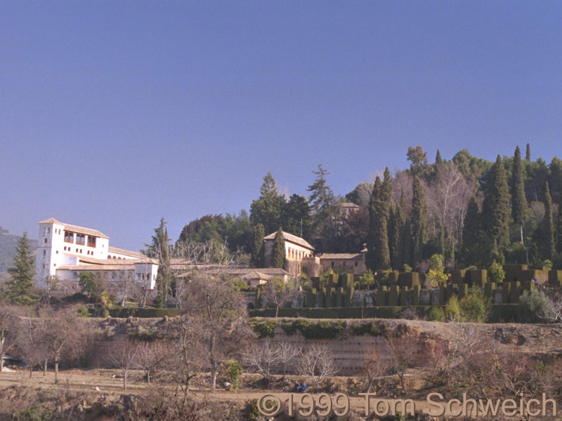 The Generalife from below.