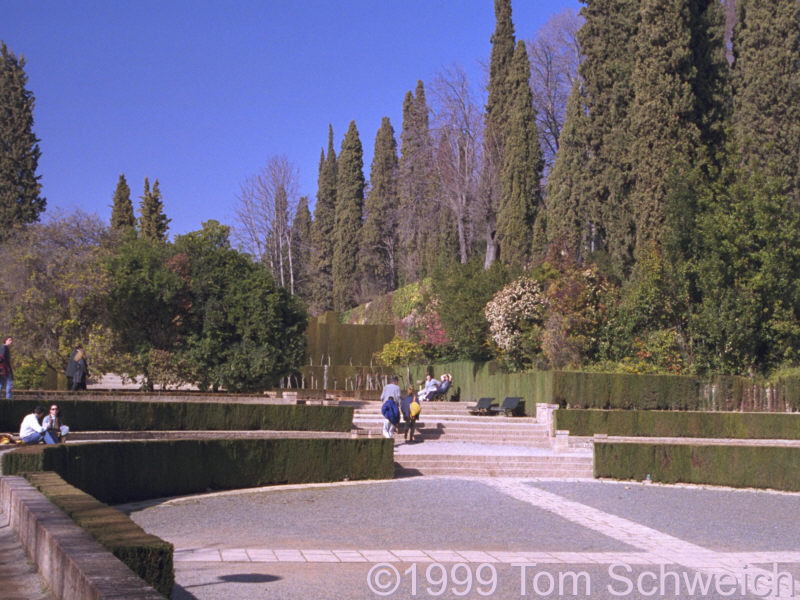 Gardens at the Generalife.