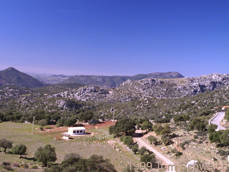 Between Benaocaz and Grazalema.