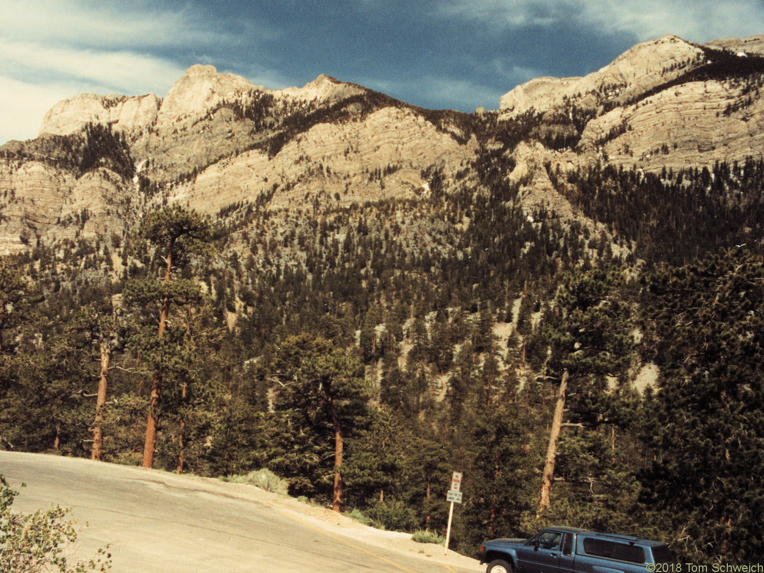 Nevada, Clark County, Mount Charleston