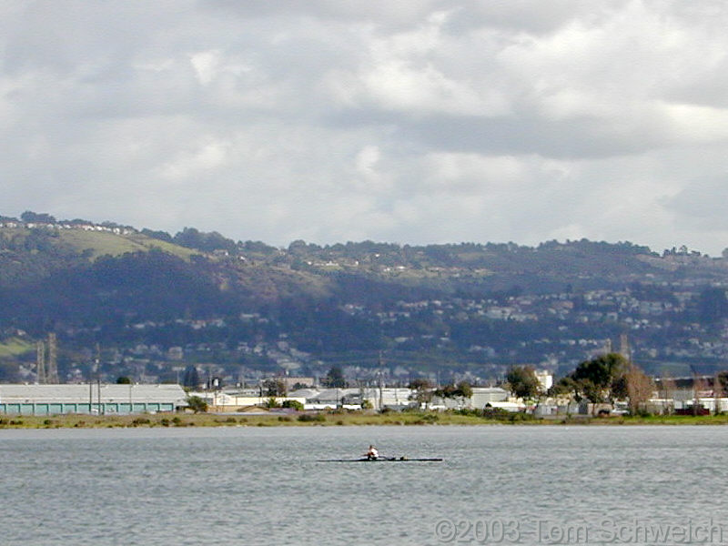 Lone rower on San Leandro Bay