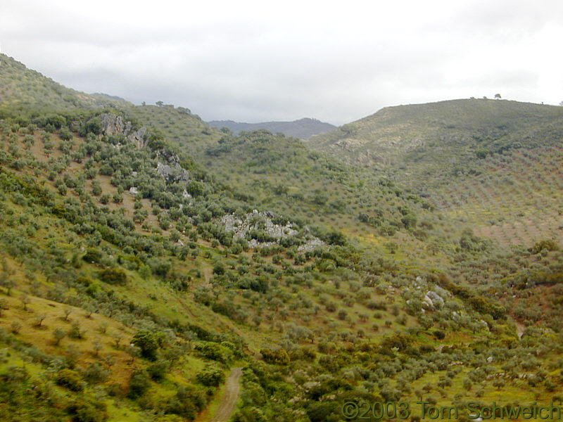 Spanish countryside in the foothills of the Sierra Morena.