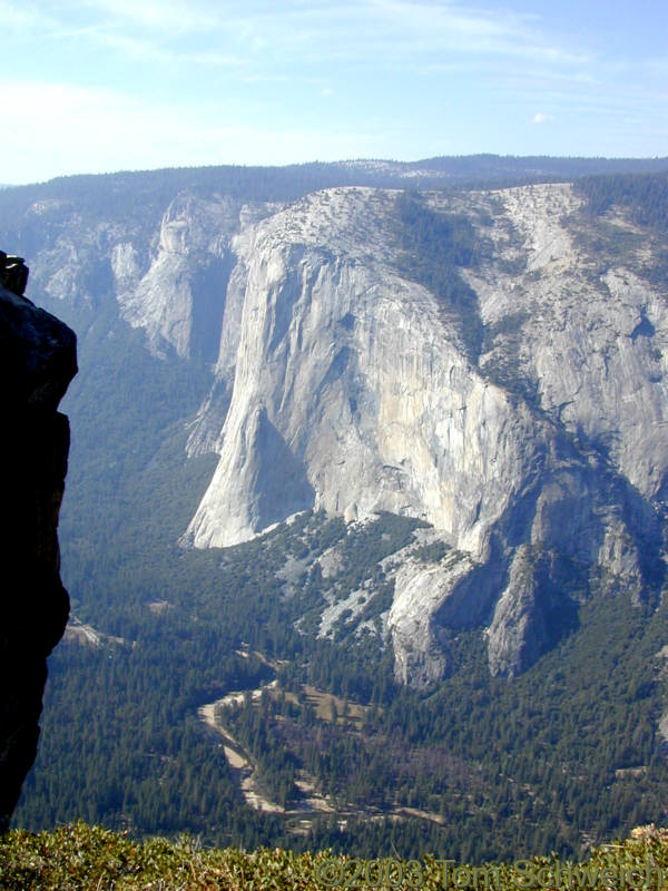 El Capitan as seen from Taft Point