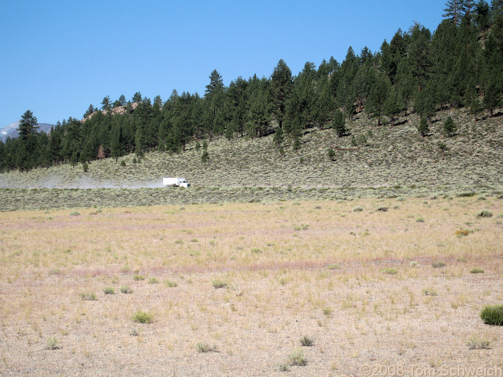 Californa, Mono County, Mono Craters, East Craters Sand Flat
