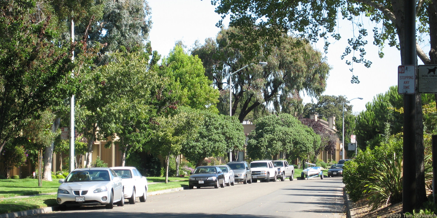 Catalina Avenue, Alameda, Alameda County, California