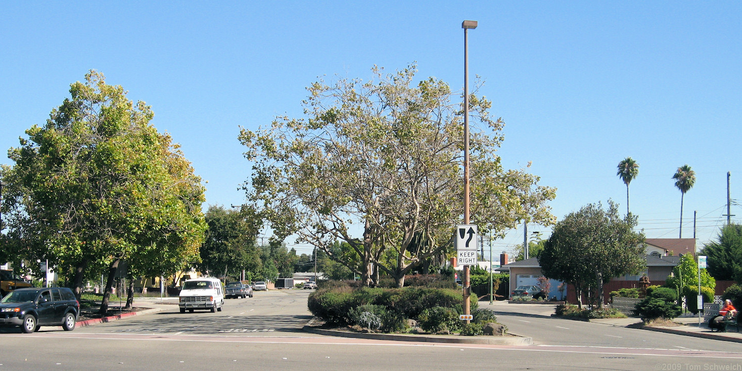 Mecartney Road, Alameda, Alameda County, California