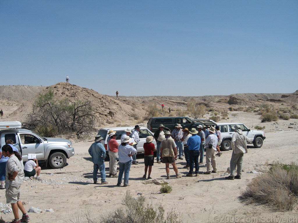 California, San Diego County, Anza Borrego State Park, Fish Creek