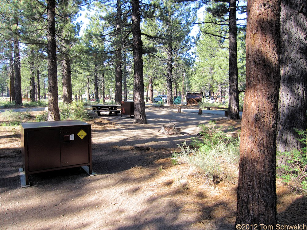 California, Mono County, Shady Rest Campground