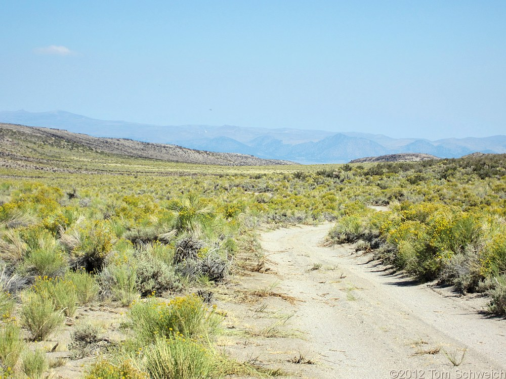 California, Mono County, Mono Basin