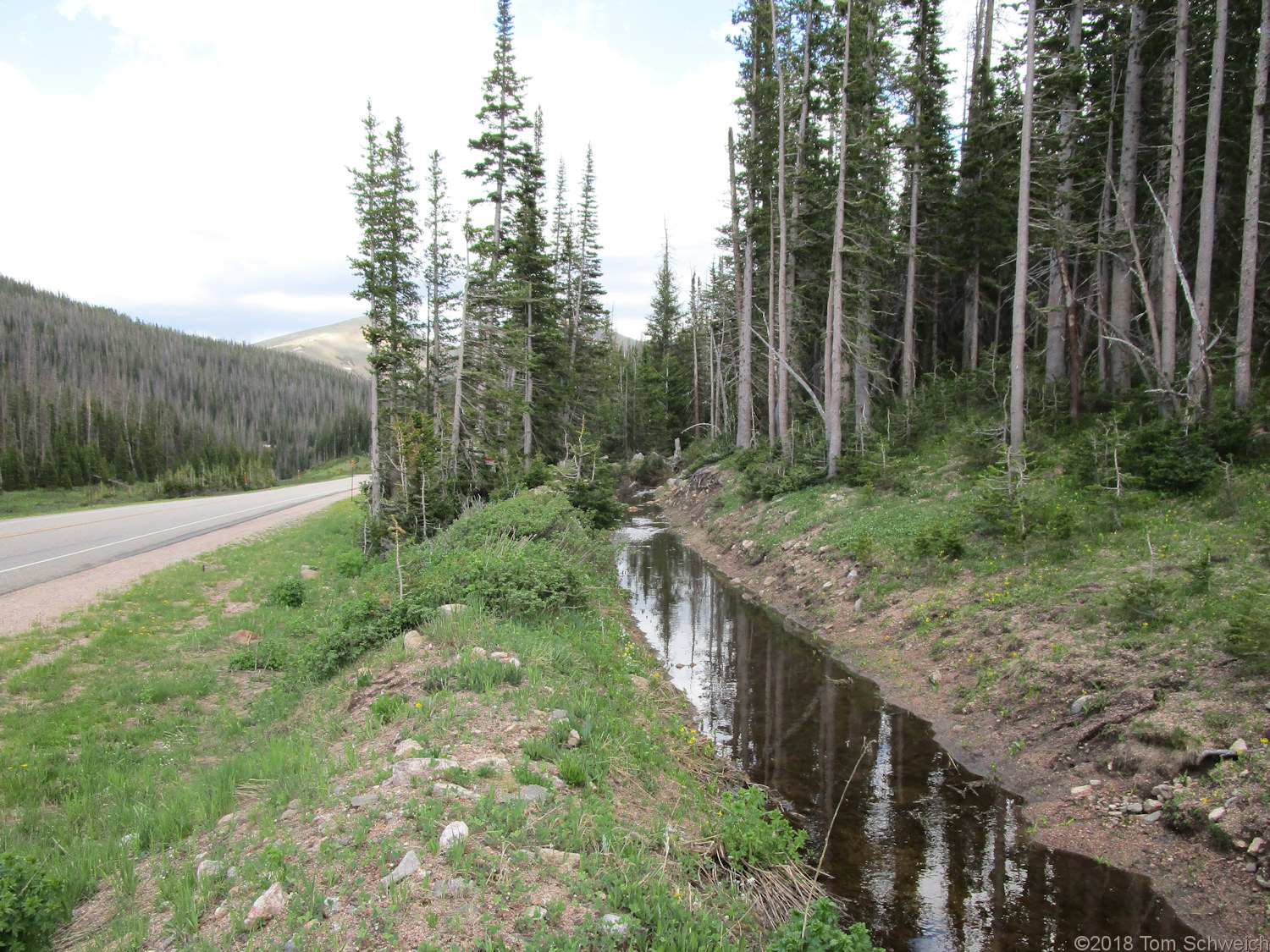Colorado, Larmier County, Cameron Pass