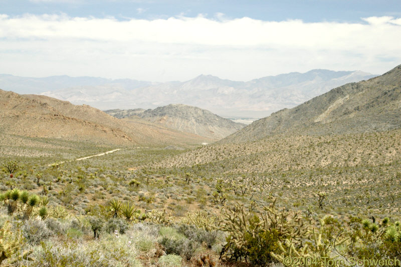 Looking east into Nevada from Winters Pass