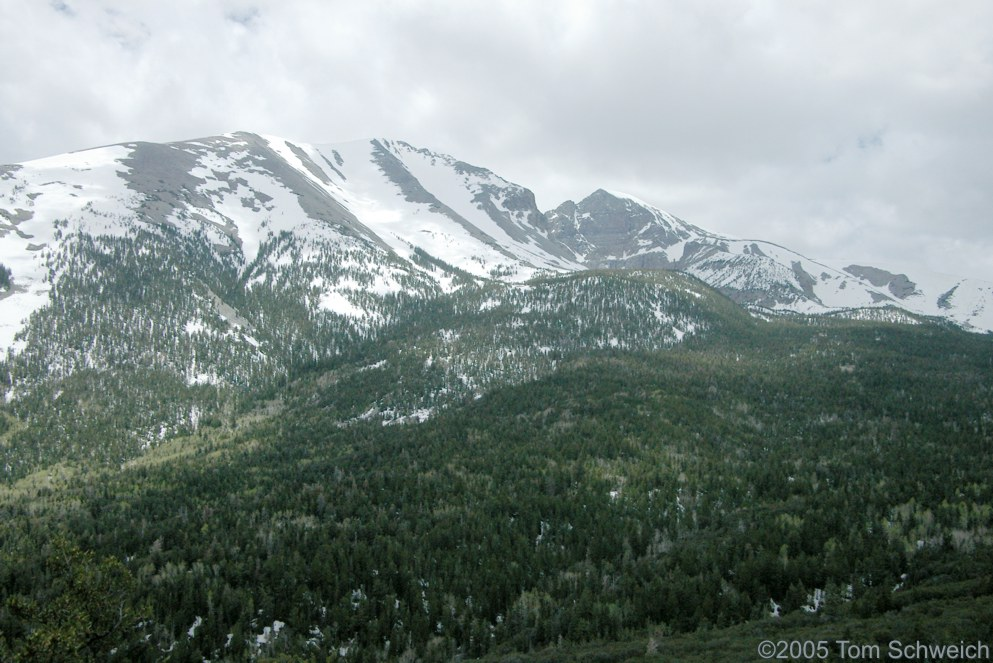 Wheeler Peak, Great Basin National Park, White Pine County, California