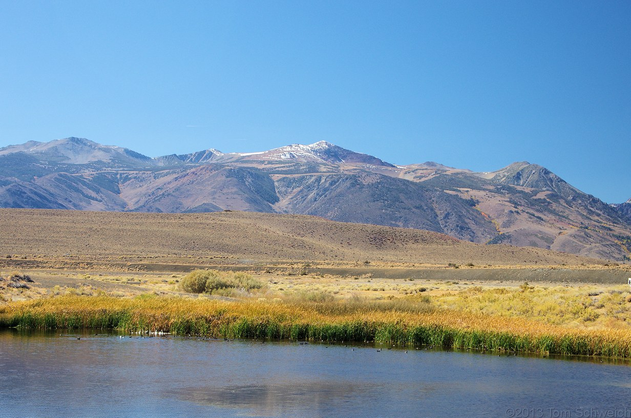 California, Mono County, County Ponds