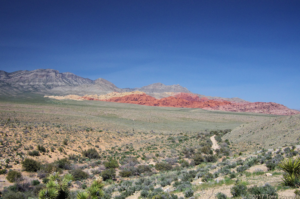 Nevada, Clark County, Red Rock Canyon National Conservation Area