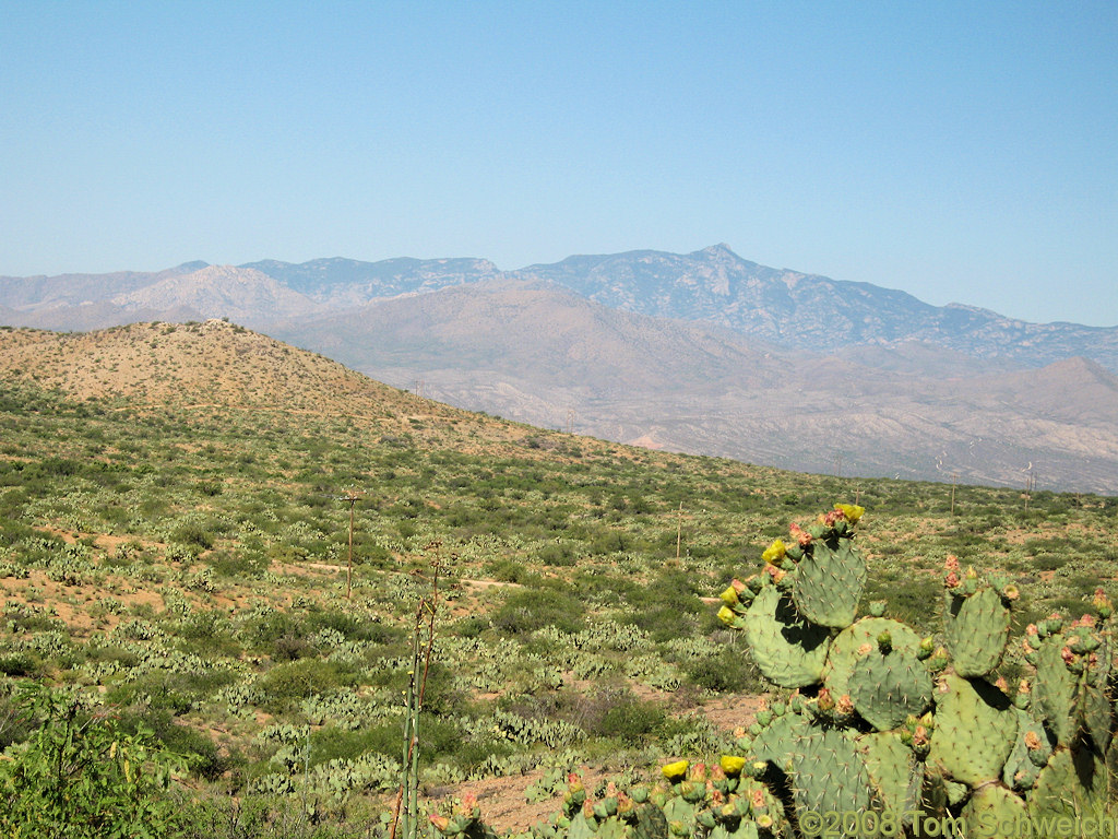 Arizona, Cochise County