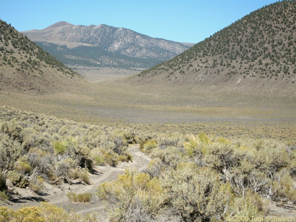 Trench Canyon, Mono County, California