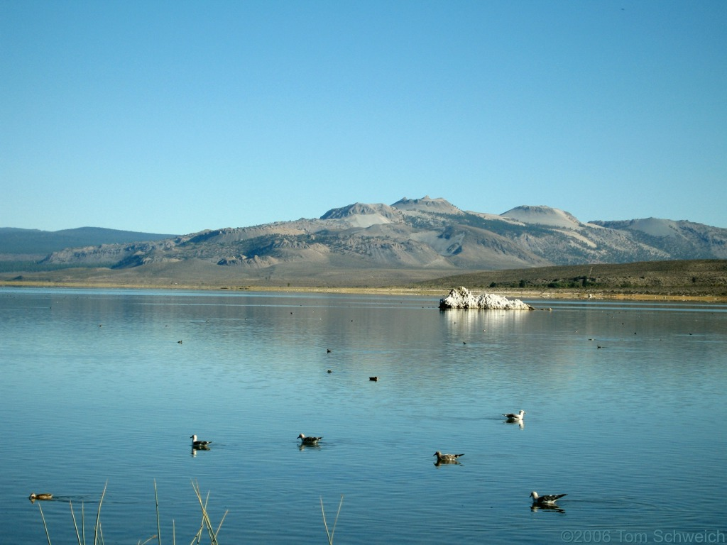 Mono Lake County Park, Mono County, California