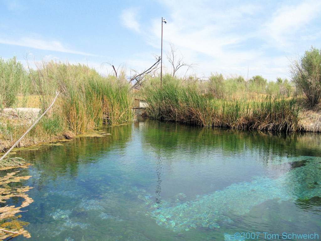 Fairbanks Spring, Ash Meadows National Wildlife Refuge, Nye County, Nevada