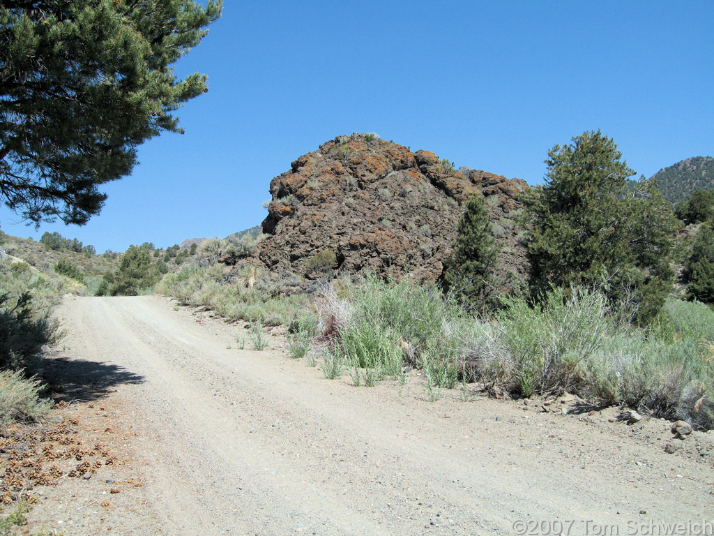 California, Mono County, Bridgeport Canyon, Coyote Spring Road
