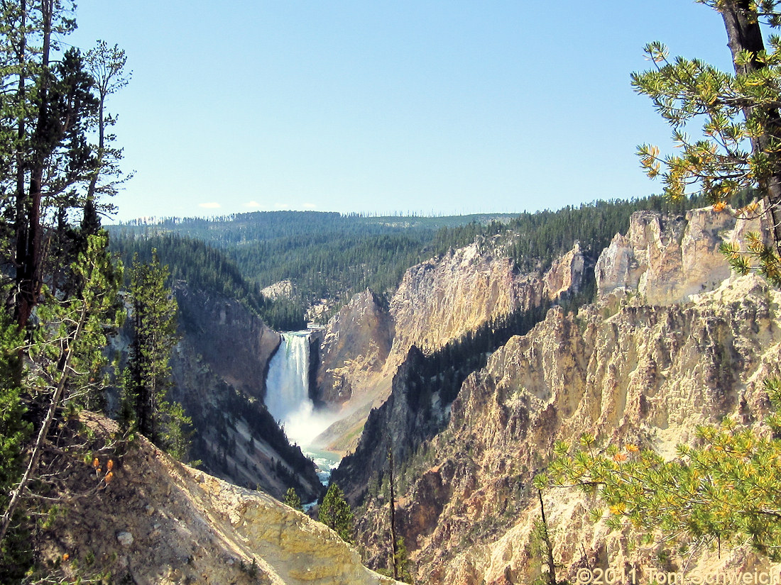 Wyoming, Park County, Lower Yellowstone Falls