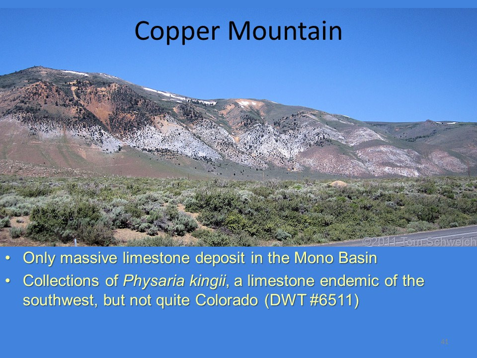 California, Mono County, Copper Mountain