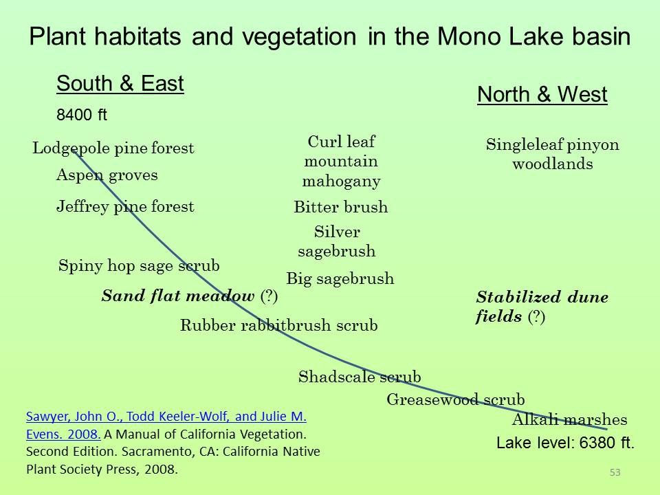 Vegetation types in the Mono Lake basin