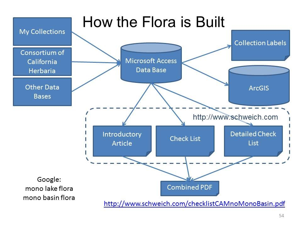 How the Flora is Built