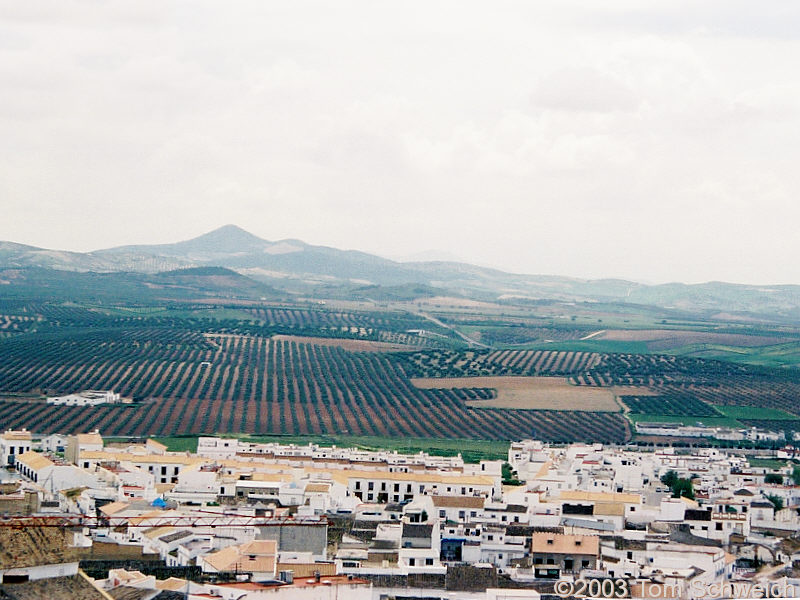 View of countryside south of Osuna
