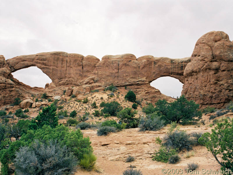 Arches at the Windows.