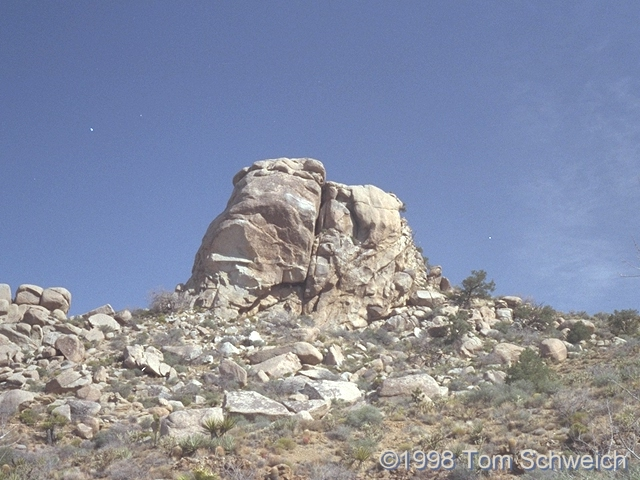 Large knob of granite in the Mid Hills near Wild Horse Canyon Road.