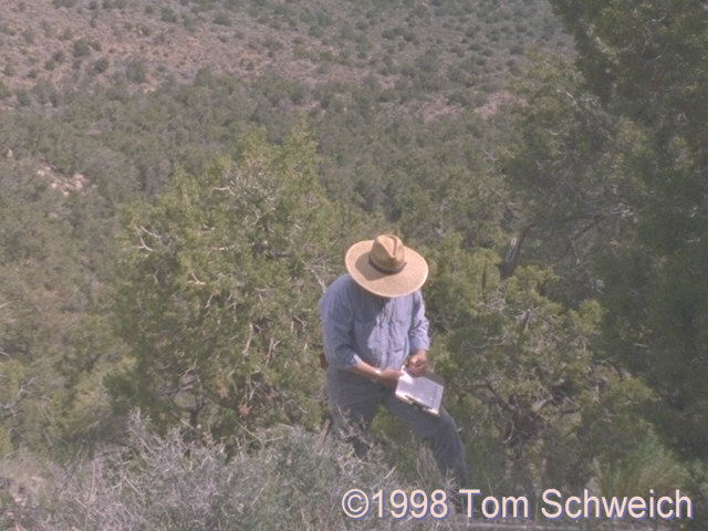 The author collecting data on the north face of Wild Horse Mesa in May 1988.